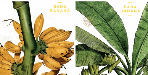 FREE L'Artisan Parfumeur Paris Bana Banana Fragrance Sample