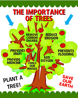FREE Dr. Arbor Talks Trees Poster for Teachers
