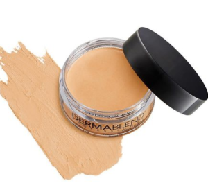 Free Dermablend Professional Foundation Shade Sample