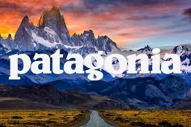 Free Stickers - Patagonia