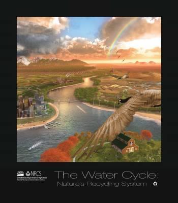 Water Cycle Poster- Educators