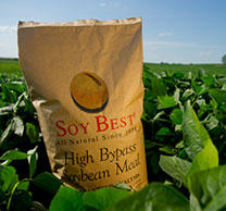 Free SoyBest Sample for Cows
