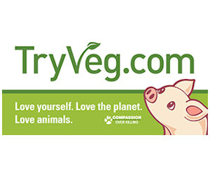 Free Try Veg Bumper Sticker Kit!