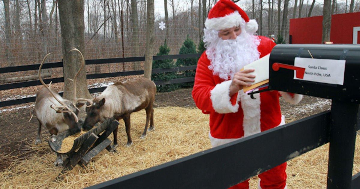 Free 24/7 Live Feed of Santa's Reindeer