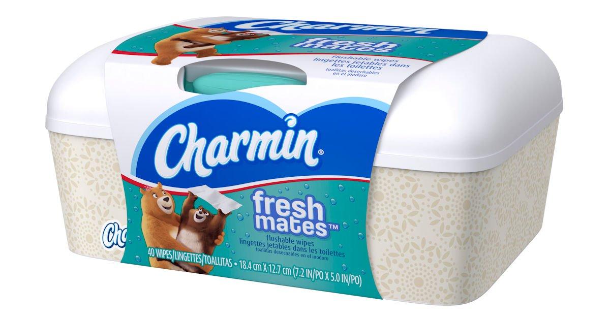 Charmin Freshmates Flushable Wipes Class Action Settlement