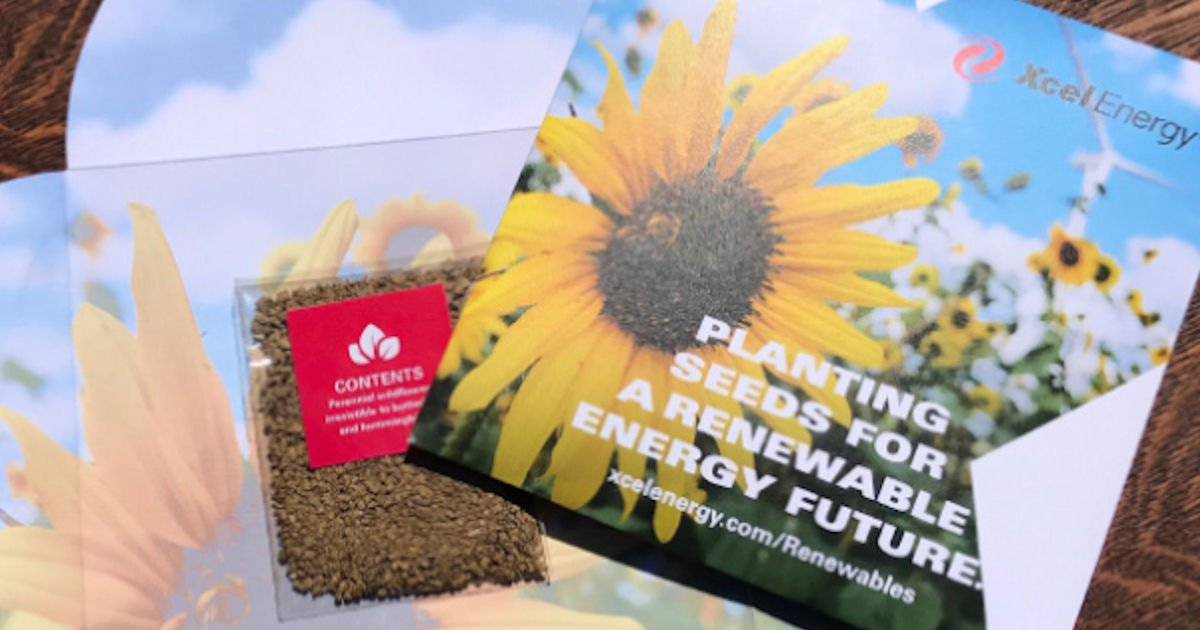 Free Pollinator Seed Pack