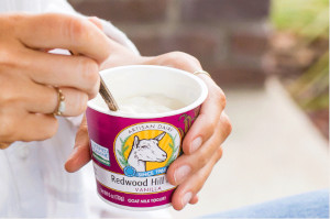FREE Cup of Redwood Hill Farm Yogurt