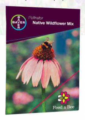 Free Plant Wildflower Seeds Packets
