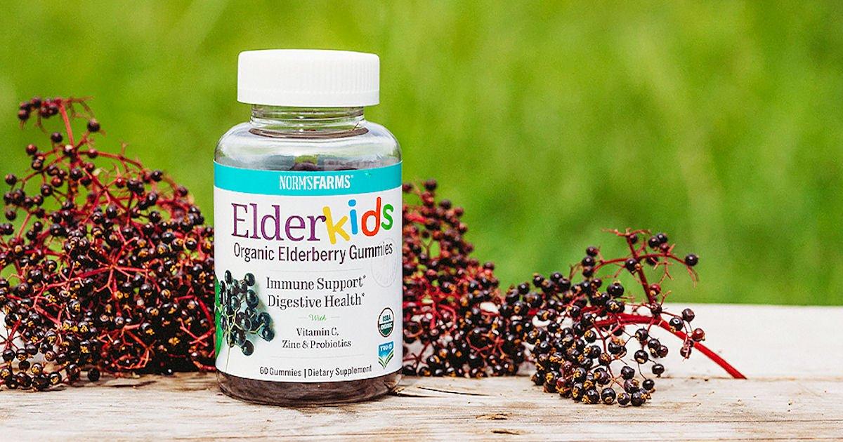 Free Norm's Farms ElderKids Organic Elderberry Gummies