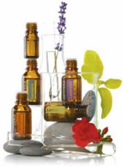 FREE doTERRA Essential Oil Sample