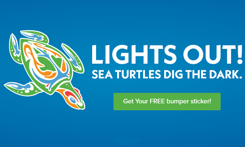 FREE Lights Out! Sea Turtles Dig the Dark Bumper Sticker