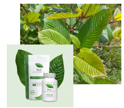 Free Sample of PUR botanical supplements for optimized health