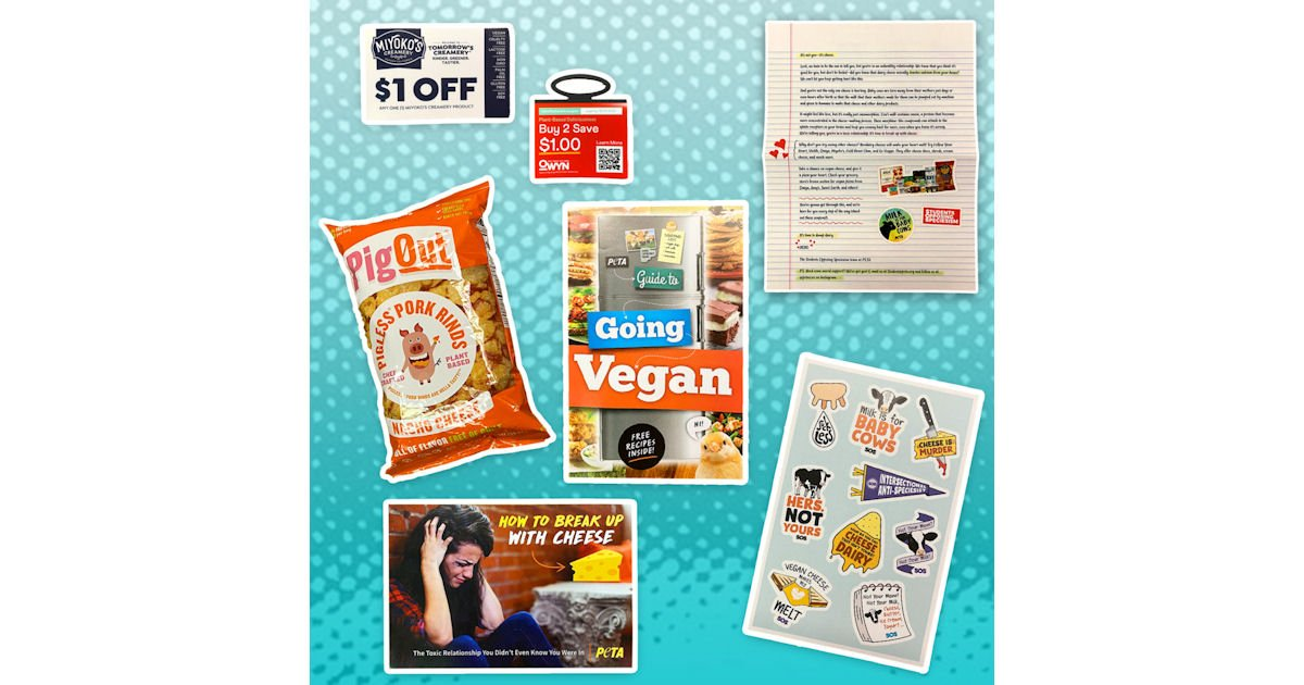 Free SOS Breakup Box - Porkless Rinds, Stickers & More